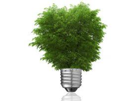 Plantenbak wekt stroom op