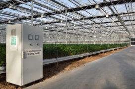 Hindernissen voor DC in glastuinbouw